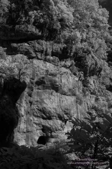 Taiwan Mountains 11