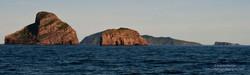 Maatsuyker Island - 2