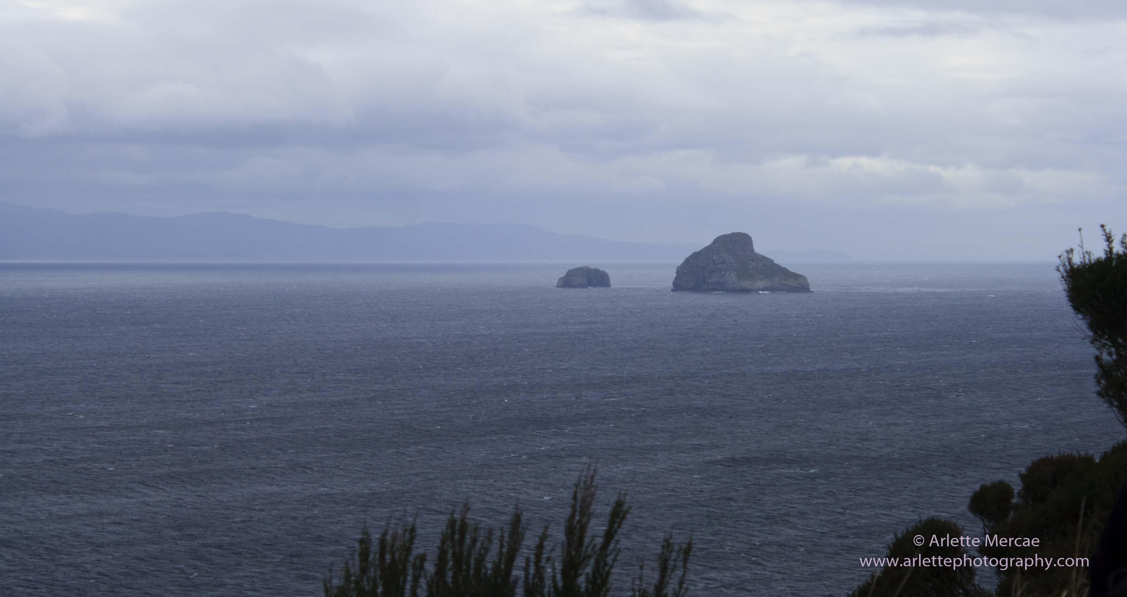 Maatsuyker Island - 14