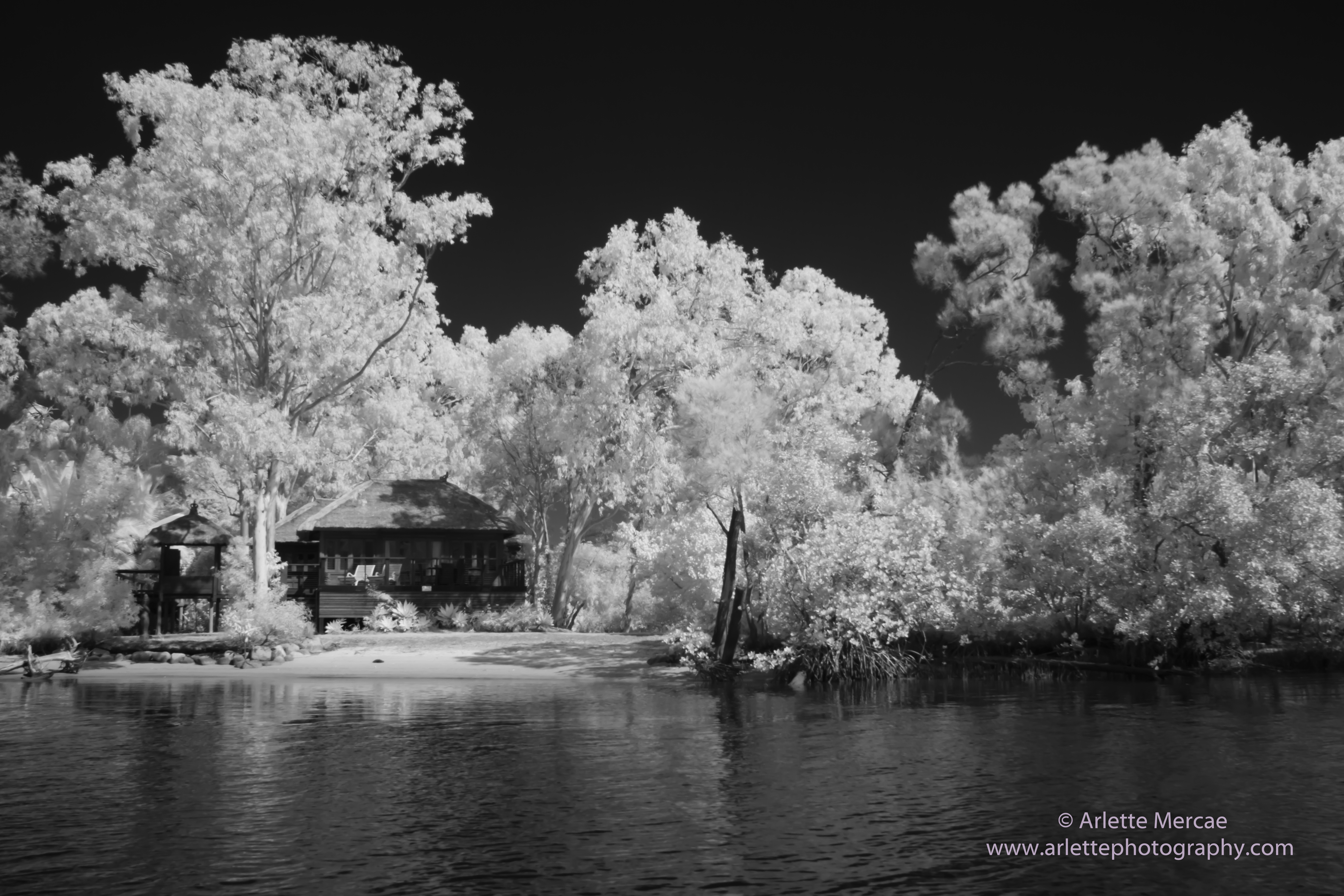 Noosa Everglades - 2