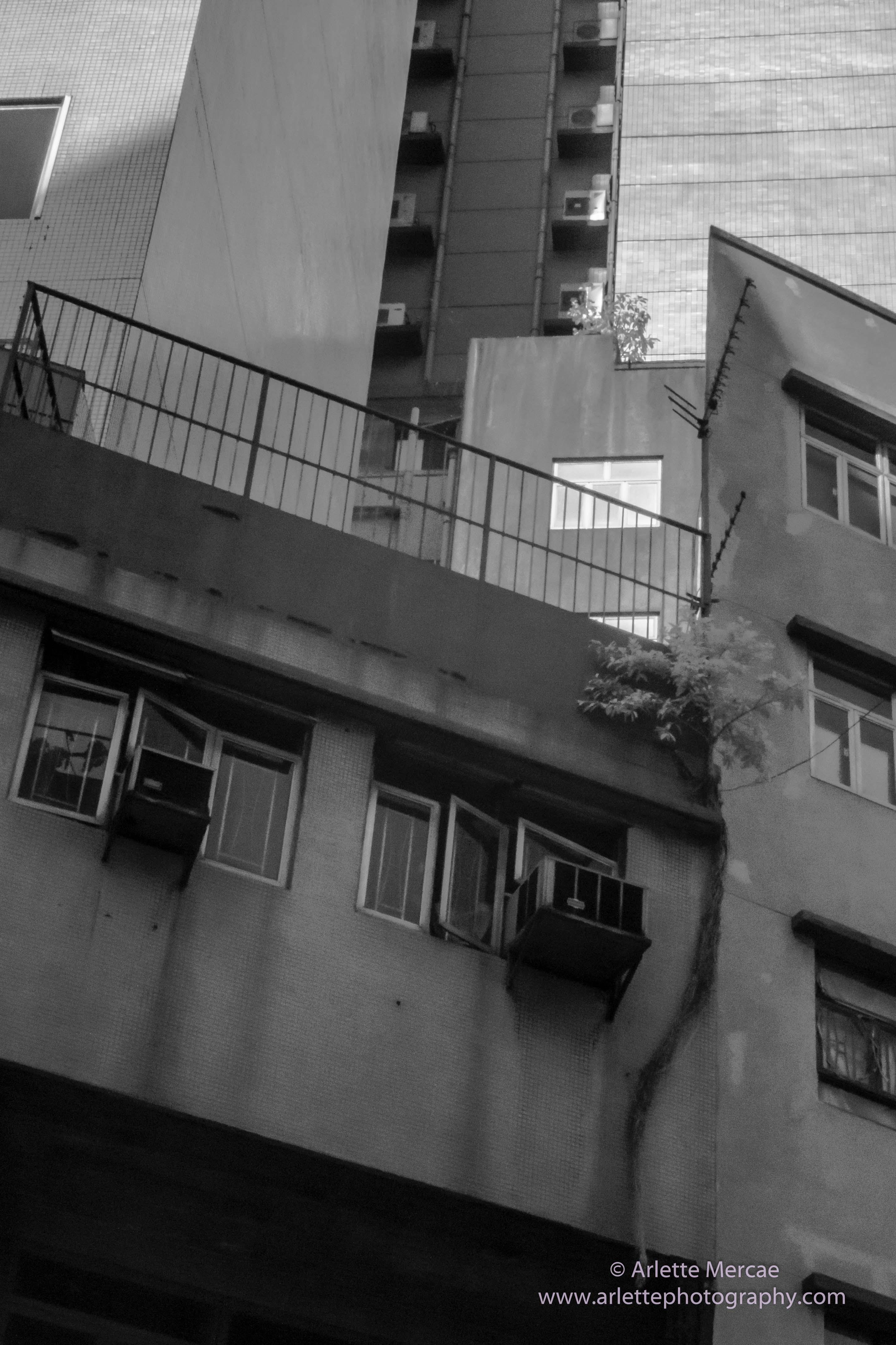 Hong Kong - Street Scene 2