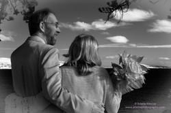 Phil & Debbie Wedding - 3