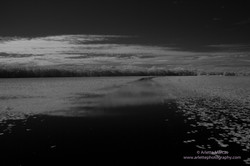 Noosa Everglades - 6