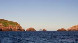 Maatsuyker Island - 1