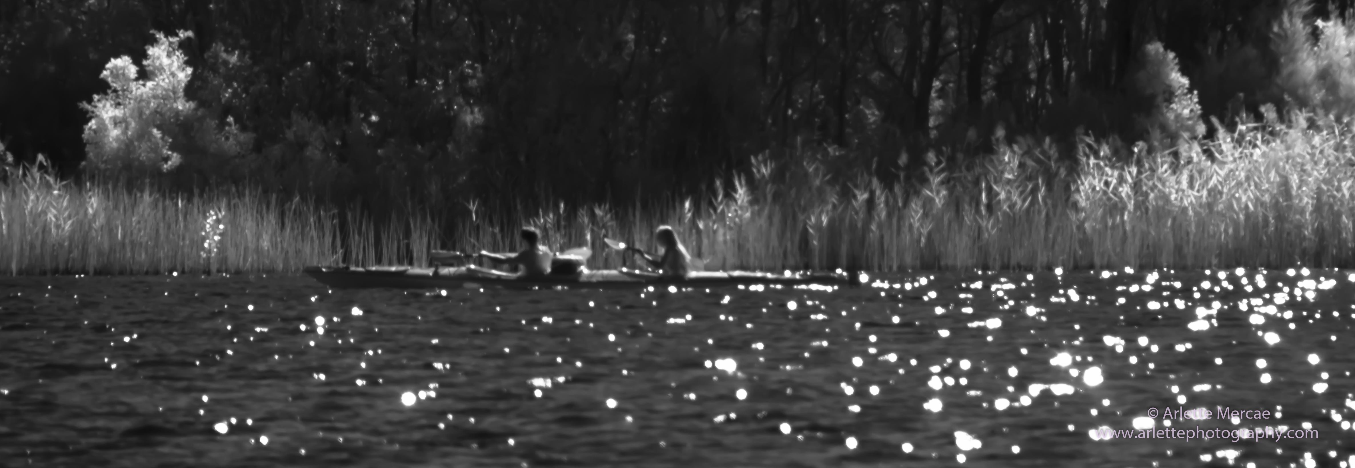 Noosa Everglades - 5