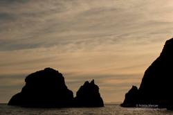 Maatsuyker Island - 11