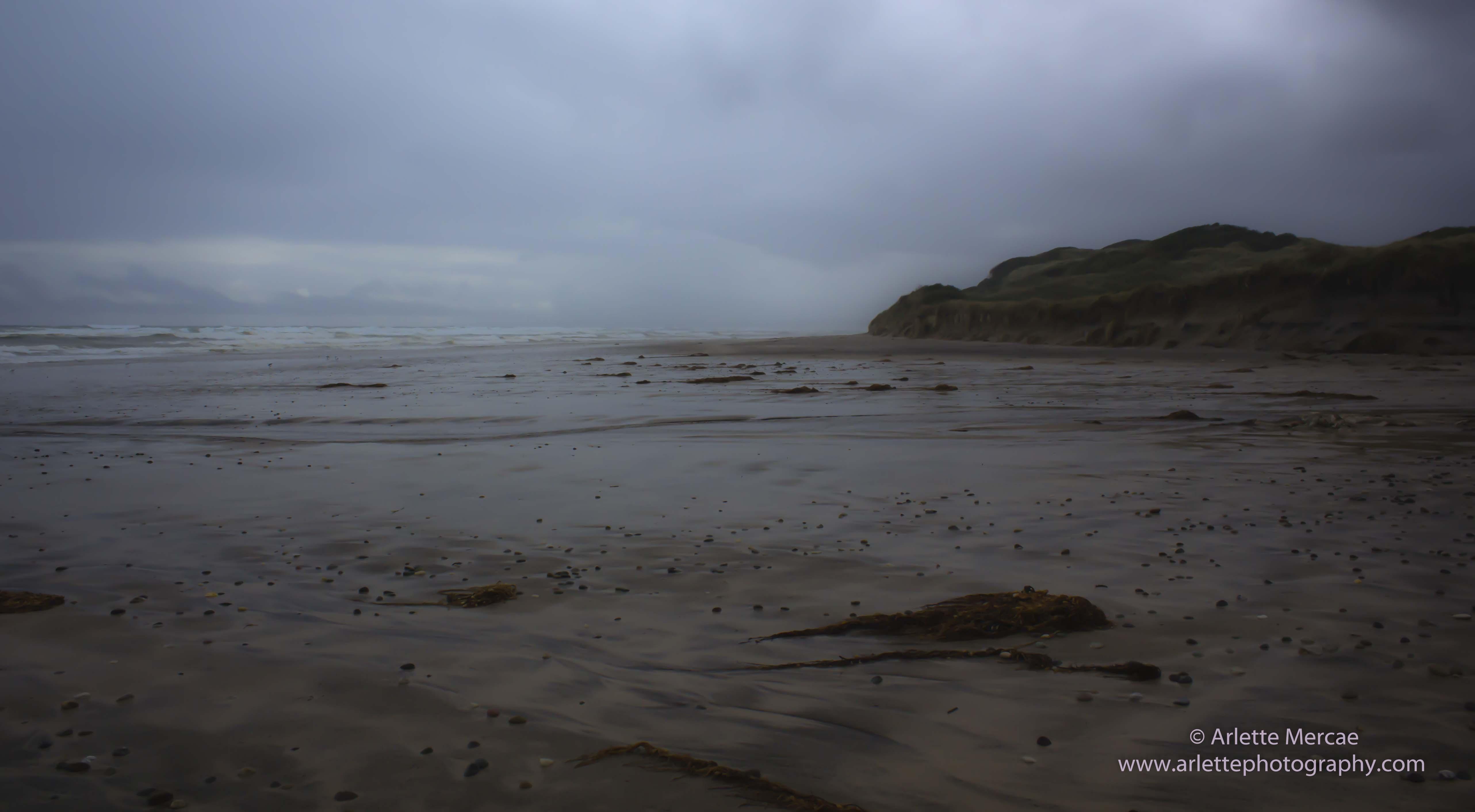 Ocean Beach - 1