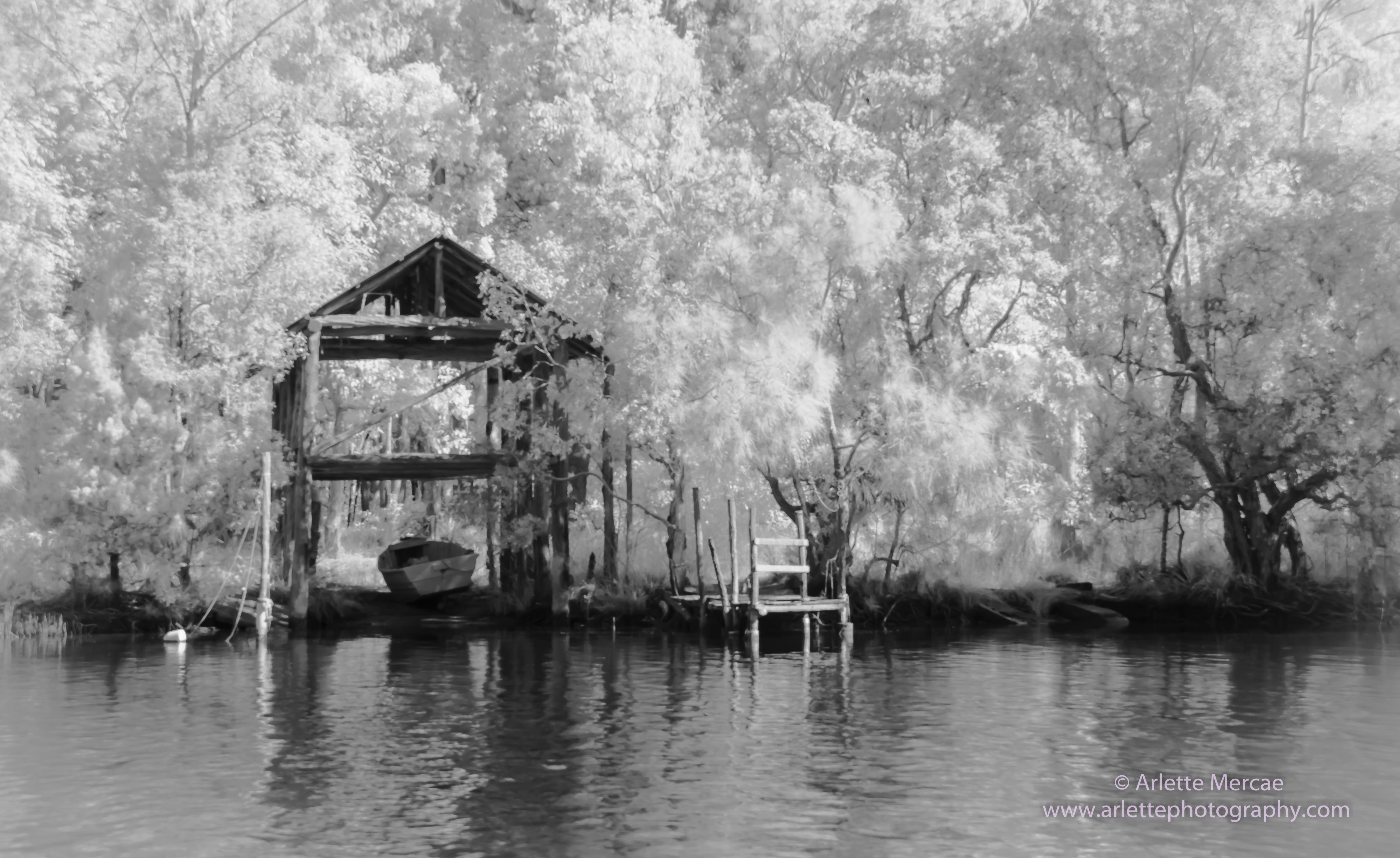 Noosa Everglades - 3