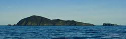 Maatsuyker Island - 10