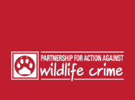 How to report Wildlife Crime in Northern Ireland, Partnership for Action Against Wildlife Crime, Northern Ireland,  PAW NI, animal welfare,