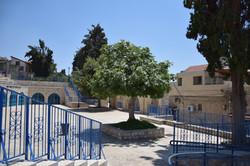 The Maayan Square