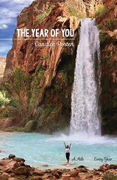 Front Cover Image Book 3 The Year of You