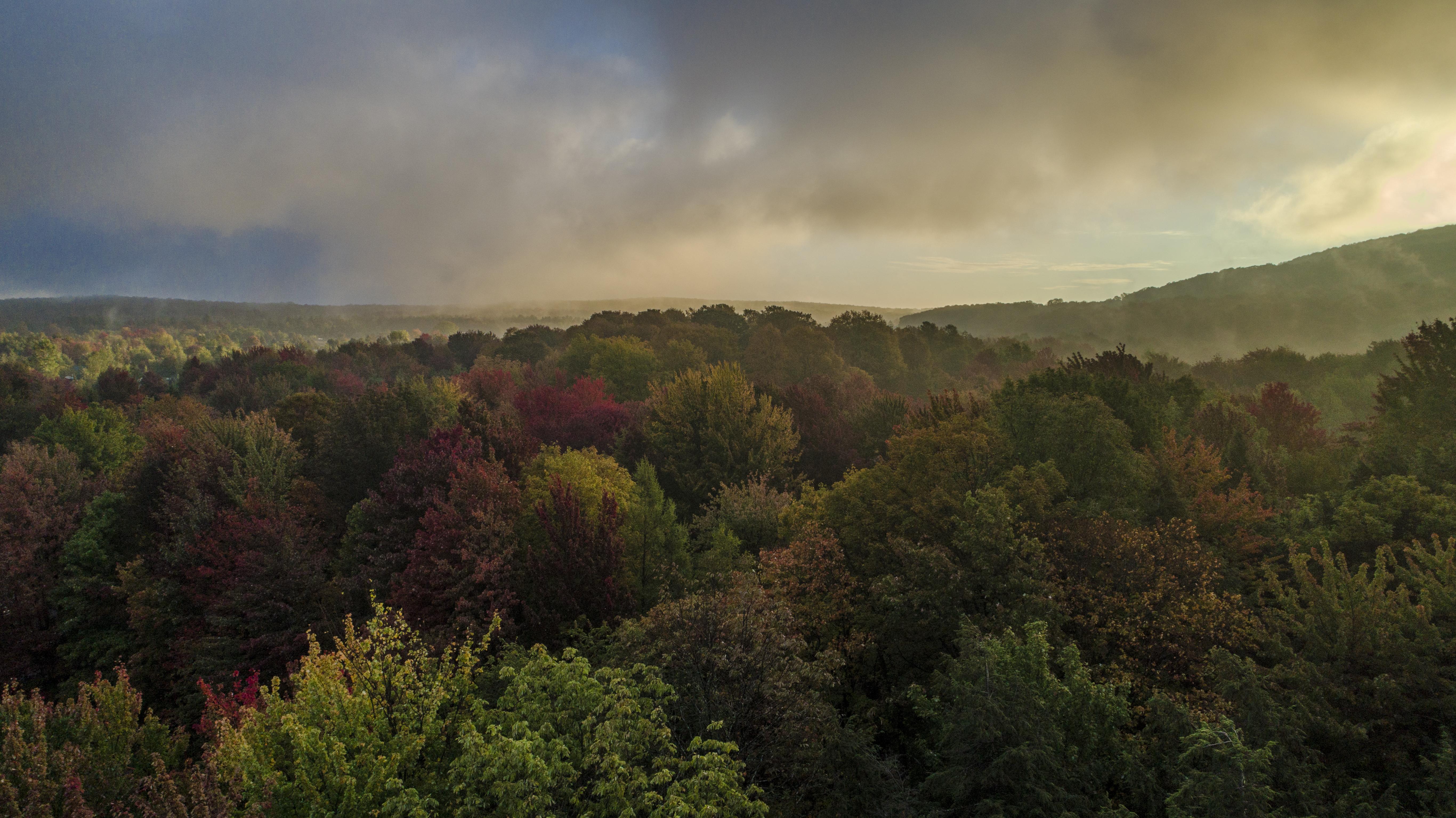 Brouillard Automne drone Dji Phantom