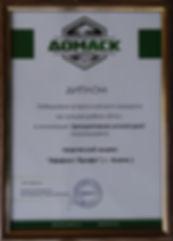 Диплом победителю конкурса 2016