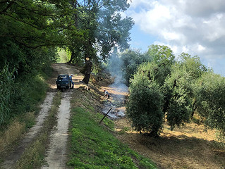 The end of spring in Giove