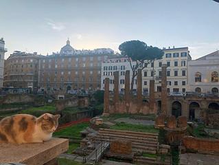Would Julius Caesar be weeping?