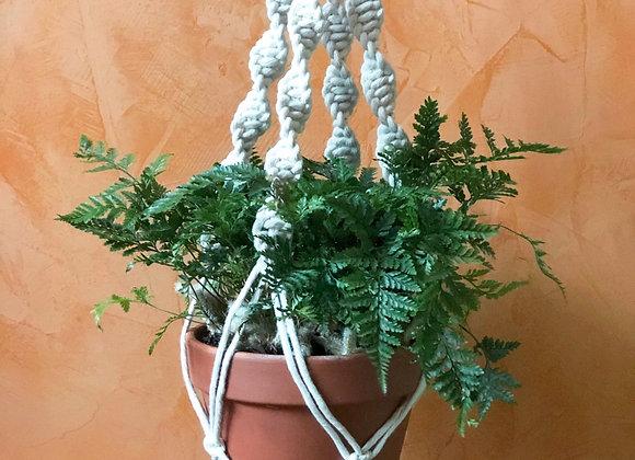 Athena - Twist Macrame Plant Hanger