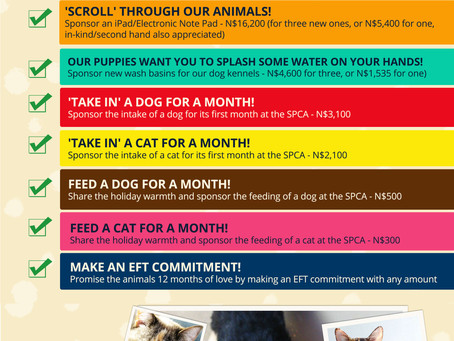 The animals at the SPCA have a  wish list!