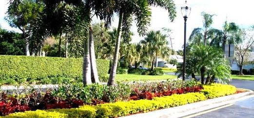 curb planting.jpg
