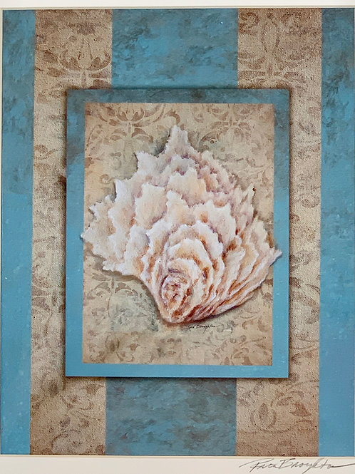 Shell and Damask III