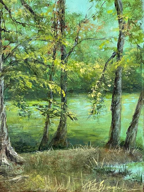 Pond Overlook