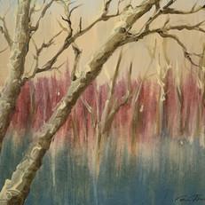 Twilight Birch
