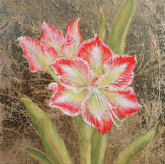 Golden Amaryllis I