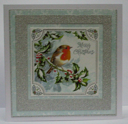 Christmas Robin On Holy