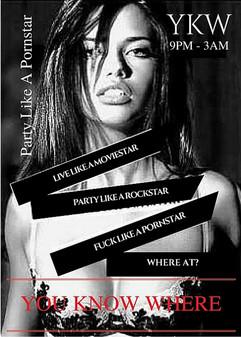 Party Like A Pornstar.jpg