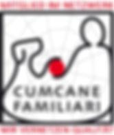 ccf Logo Netzwerk Mitglied klein.jpg