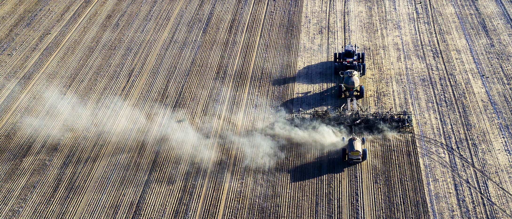 Dry seeding _0016