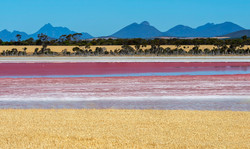 Pink Lake Stirlings wheat stack