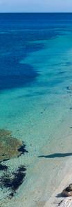 Shark Bay _0033.jpg