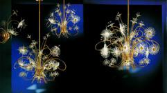 Profili Lighting Anemone
