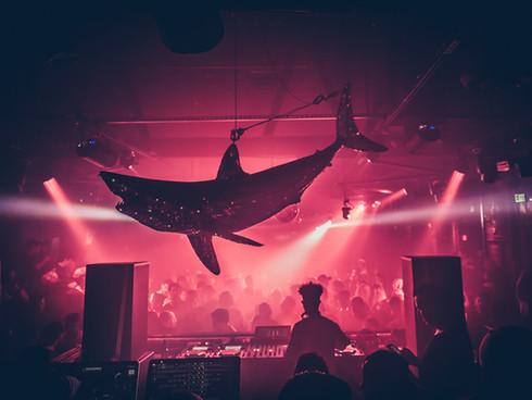 • Sound Nightclub