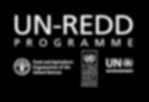 NEW UN REDD LOGO_ EG_WHT2.png