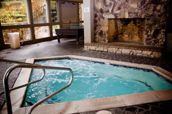 Jacuzzi • Ping Pong • Fireplace