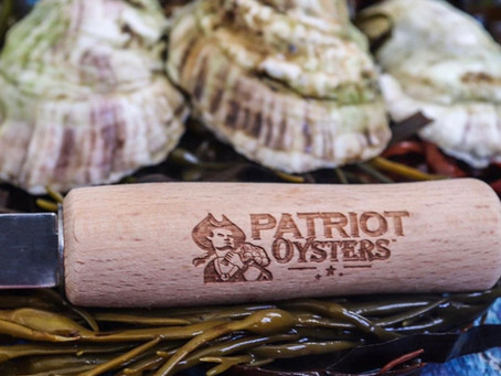 Oysters, the patriot way
