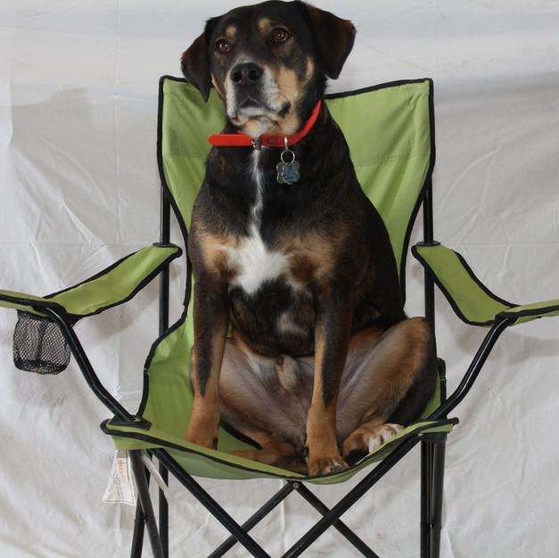 Camp Chair
