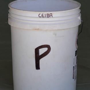 Pee Bucket