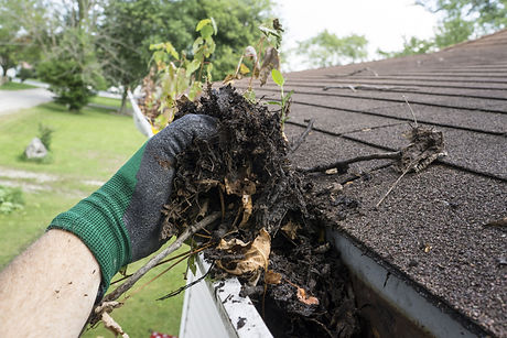 Worker Cleaning Gutters For A Customer.jpg