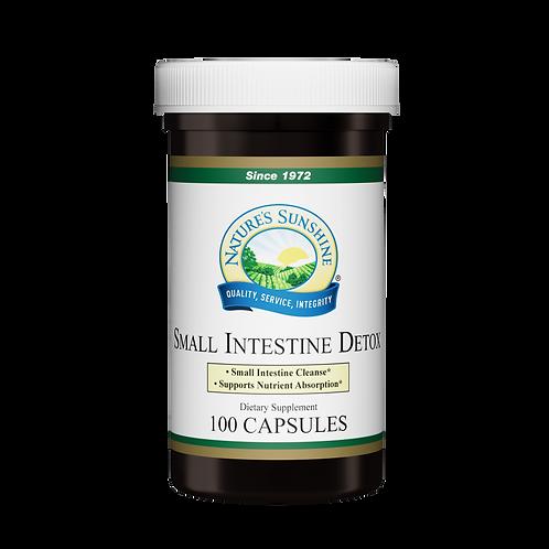 Small Intestine Detox