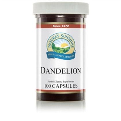 Dandelion (100 Caps)