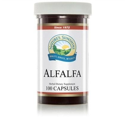 Alfalfa (100 Caps)
