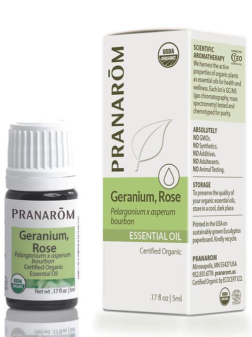 Geranium, Rose