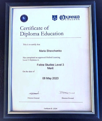 OXFORD%20CERTIFICAT_edited.jpg