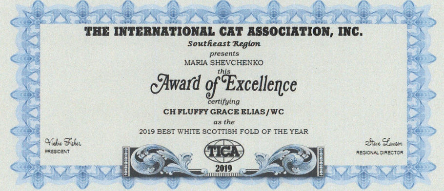 BEST WHITE ELIAS 2019 TICA 2019-06-23 00