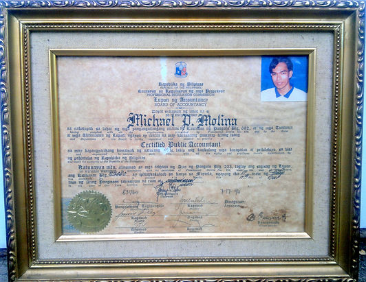 Certified Public Accountant License, Michael P Molina
