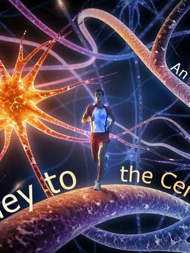 To the Centre of the Brain