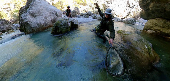 Guided fly fishing in Slovenia